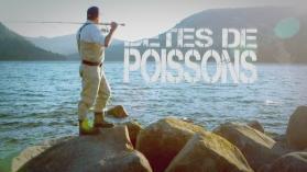 BETES DE POISSONS : ANGUILLE ELECTRIQUE