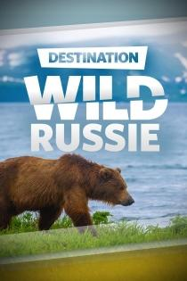 DESTINATION WILD : RUSSIE