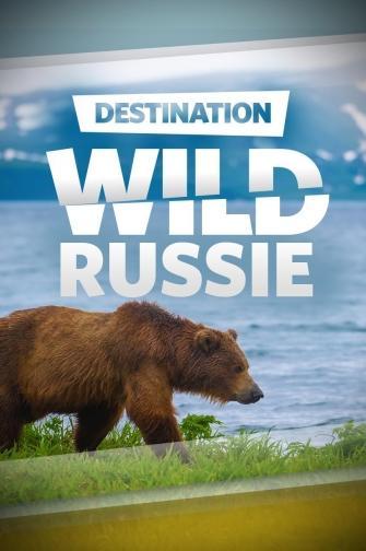 DESTINATION WILD : RUSSIE