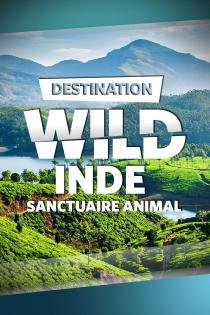 INDE : SANCTUAIRE ANIMAL