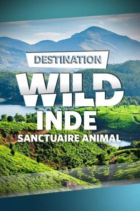 INDE : SANCTUAIRE ANIMAL