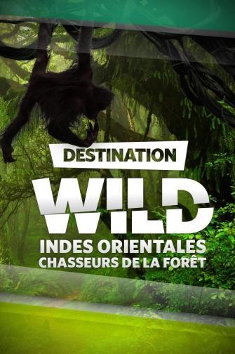 DESTINATION WILD : INDES ORIENTALES : CHASSEURS DE LA FORÊT
